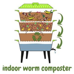 Best indoor worm composter